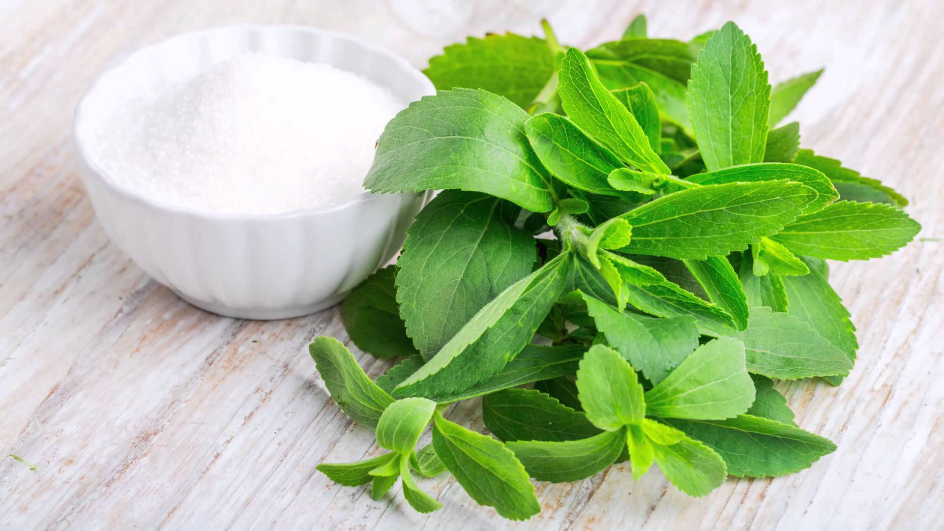 Stevia: Um Substituto Natural do Açúcar