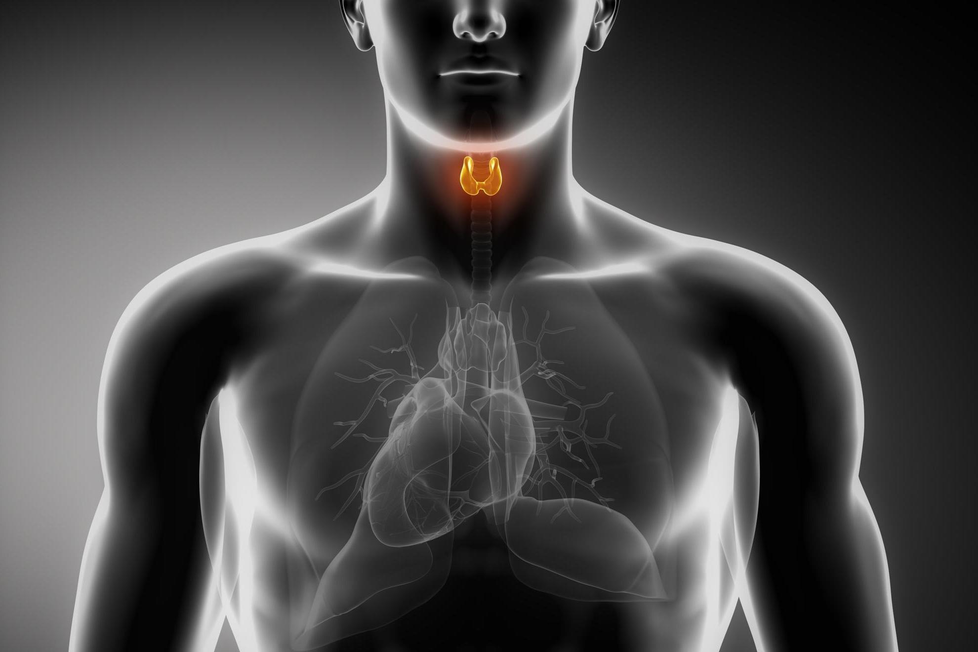 Hipotireoidismo: O Que É, Causas, Sintomas e Tratamento