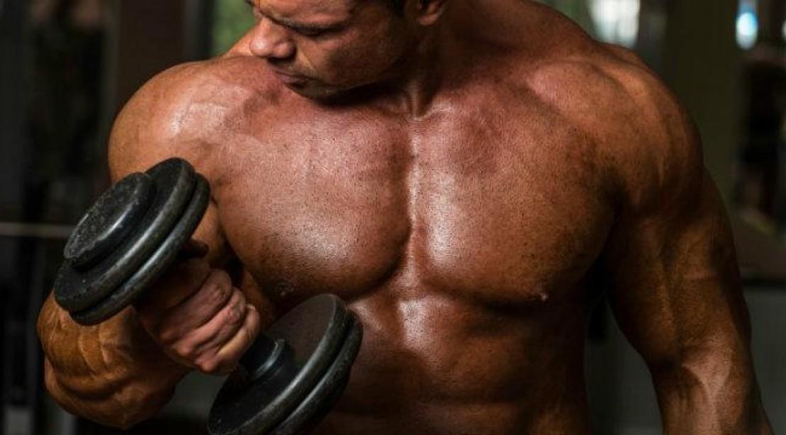 Que Papel Desempenha a Miostatina no Crescimento Muscular e Como Bloqueá-la