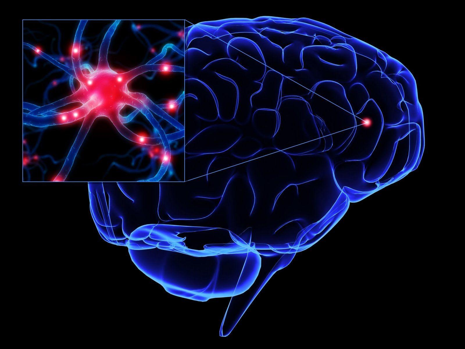 Remédios Para Esclerose Lateral Amiotrófica (ELA)