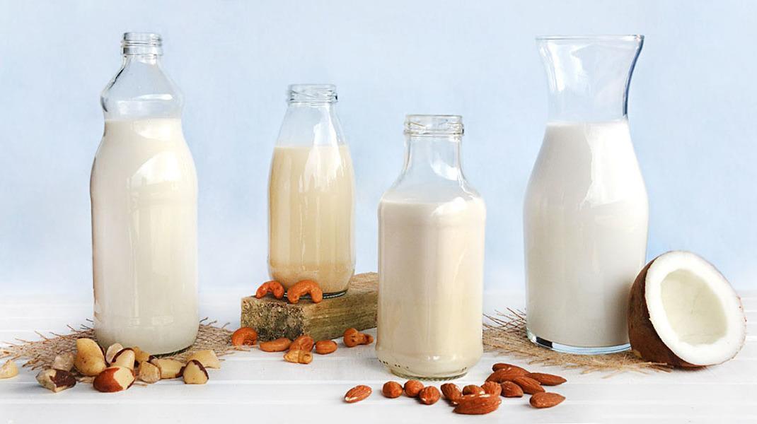 Alternativas ao Leite de Vaca: Conheça as Principais Opções