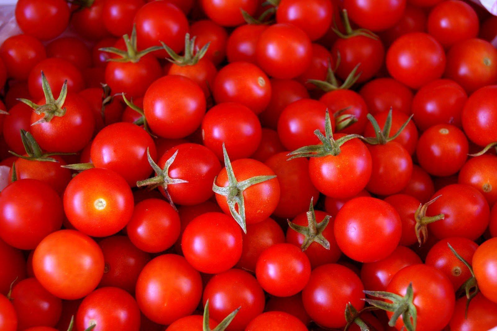 Tomates: Utilidades, Receitas e Benefícios