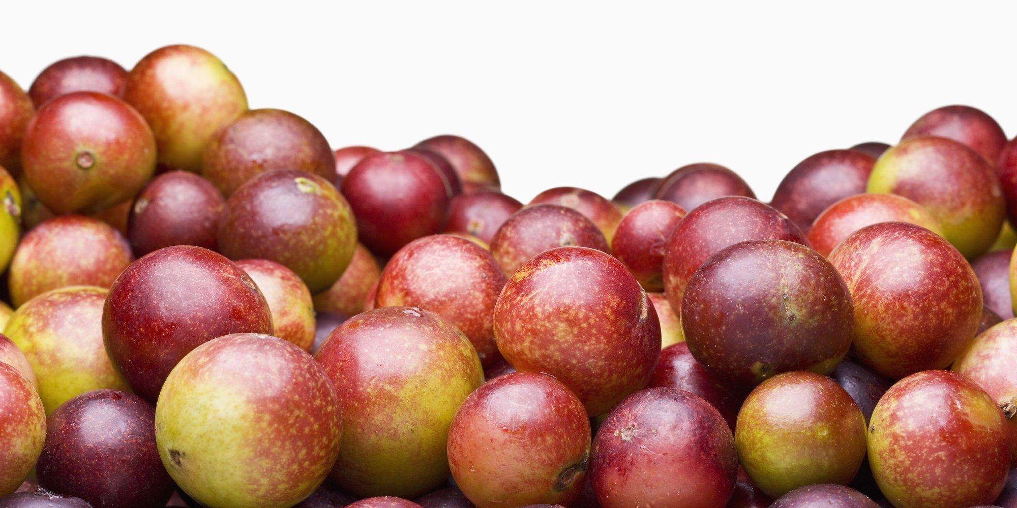 Camu Camu: O que é, Propriedades, Benefícios e Como Consumir
