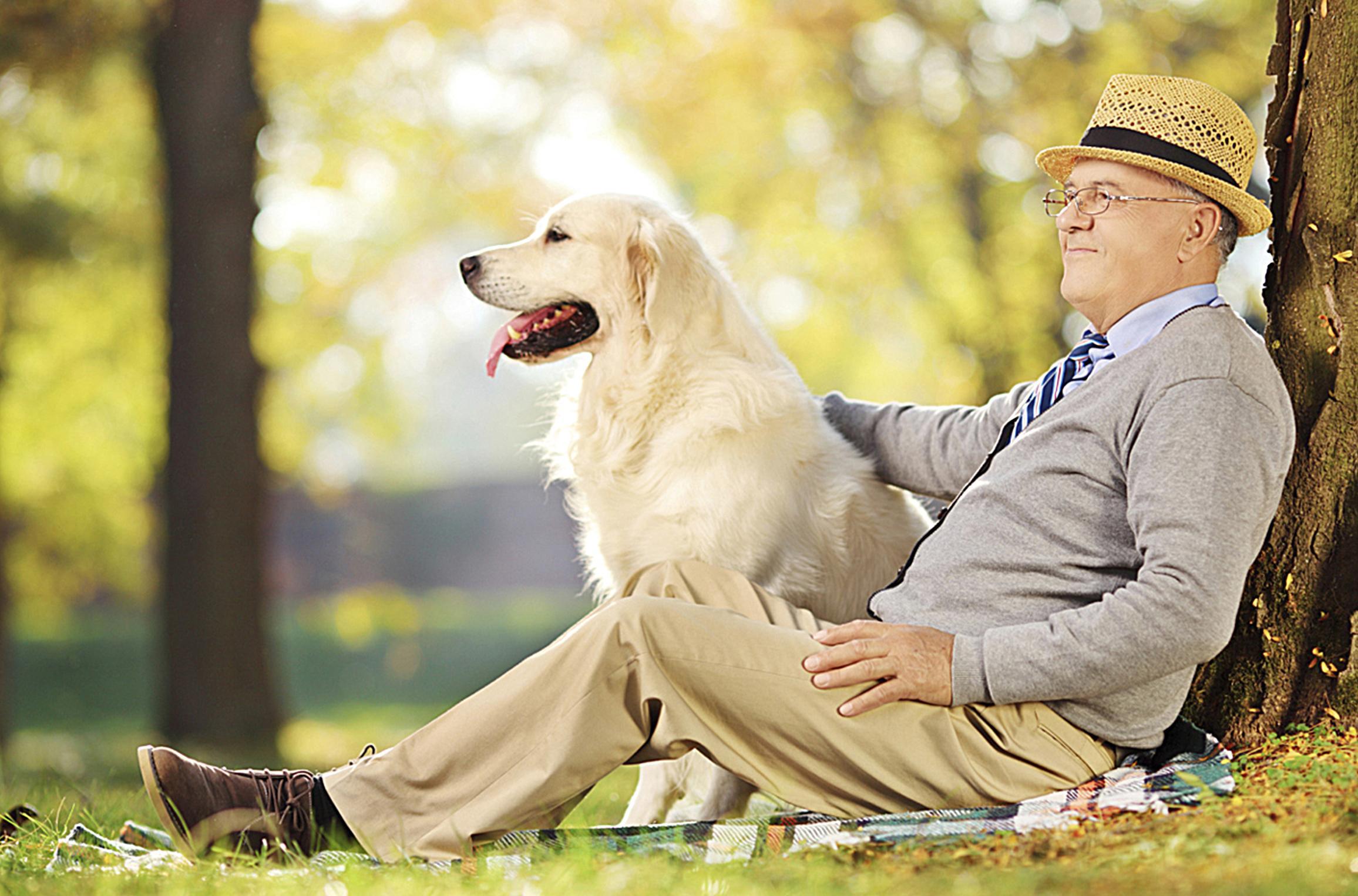 Animais de Estimação Podem Ajudar Idosos a Ficarem mais Felizes