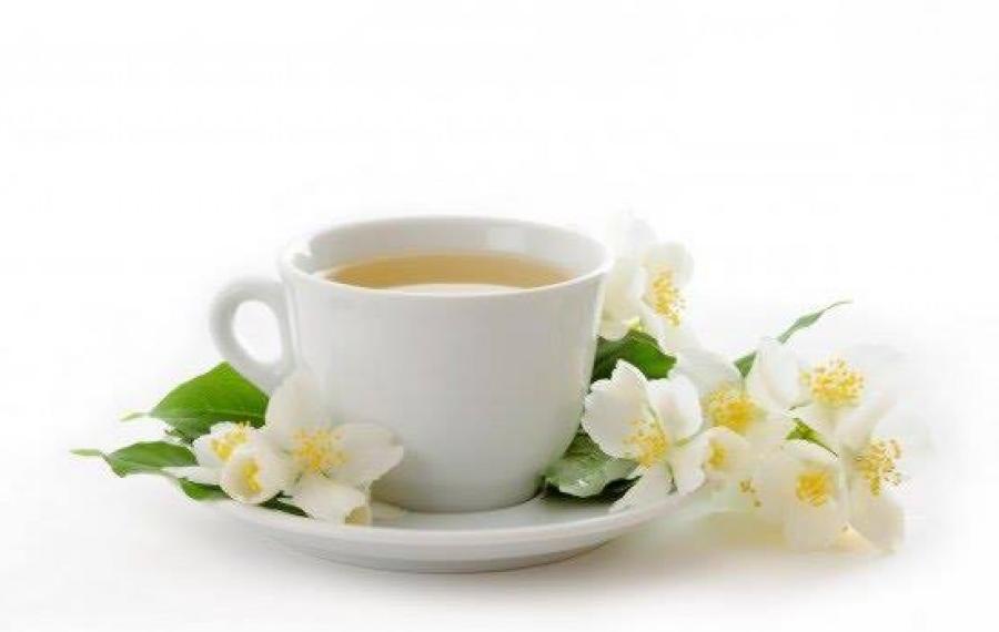 Chá Branco: Benefícios, Para Que Serve e Como Tomar