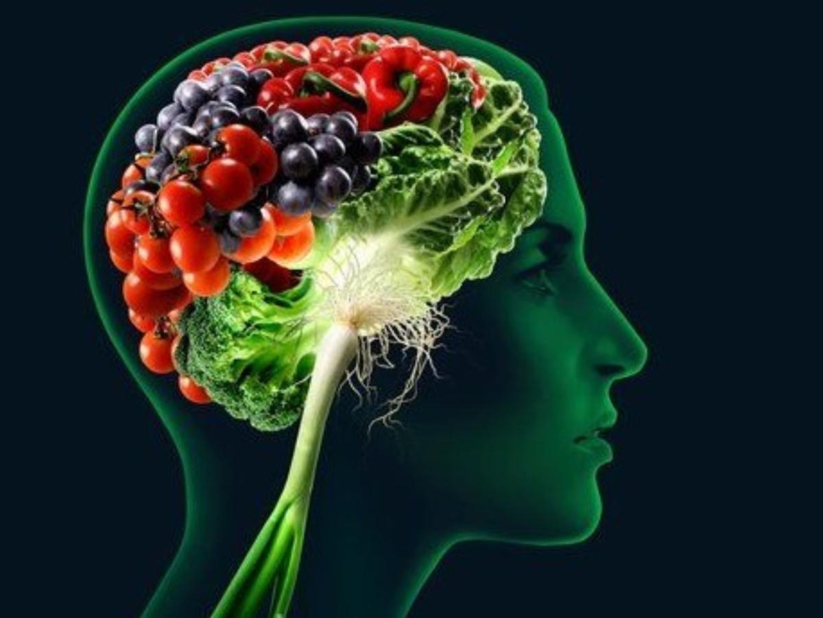 Sete Alimentos e Nutrientes Básicos para os seus Neurônios