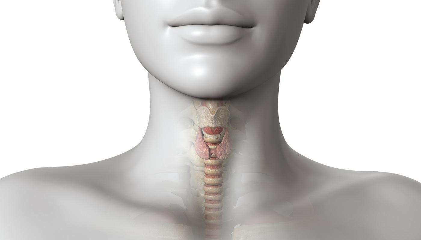 Sintomas de Tireoidite de Hashimoto